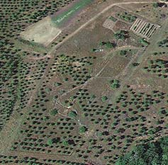Aerial view of the vegetable garden and orchard