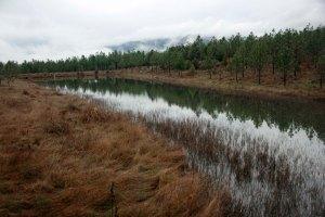 Lower Pond-Feb2014