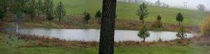 Upper Pond-Feb2014